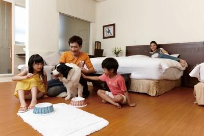 寵物家庭房