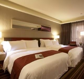 豪華雙床3人房
