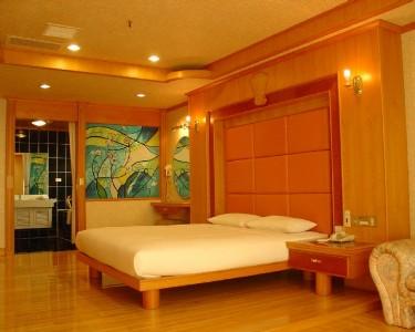 VIP豪華客房