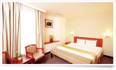 大饭店二人房-单床